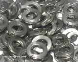 SS Lock Washers