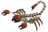 WILD REPUBLIC Nuts & Bolts™ Scorpion 237 Pieces, Construction Set, Wrench & Screwdriver Included, Create Your Own Animal, Each